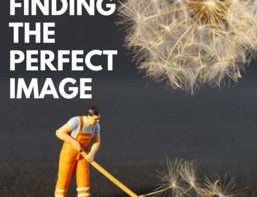 Finding the Perfect Image