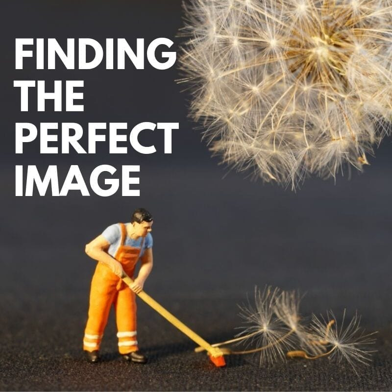 Finding the Perfect Picture for Marketing